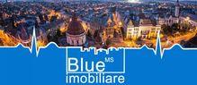 Dezvoltatori: BLUE IMOBILIARE - Targu Mures, Mures (localitate)