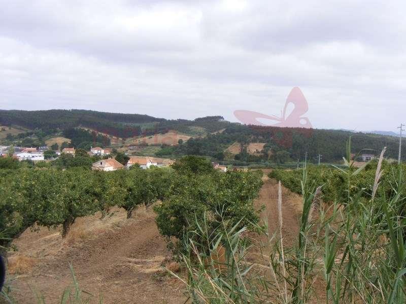 Quintas e herdades para comprar, Lourinhã e Atalaia, Lourinhã, Lisboa - Foto 32