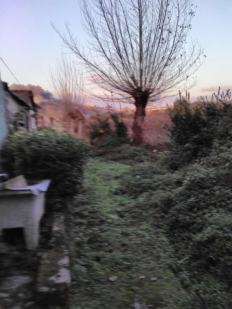 Quintas e herdades para comprar, Oliveira do Douro, Vila Nova de Gaia, Porto - Foto 23