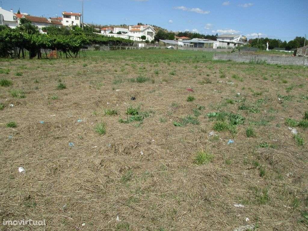 Terreno para comprar, Frazão Arreigada, Paços de Ferreira, Porto - Foto 3