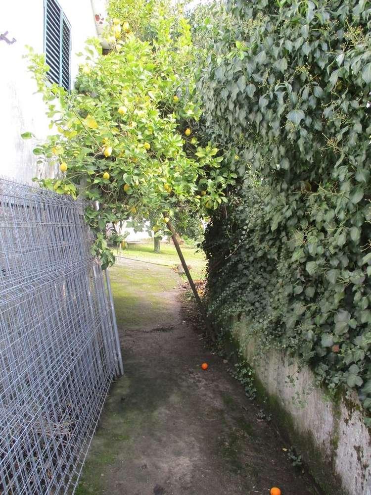Quintas e herdades para comprar, Avessadas e Rosém, Porto - Foto 10