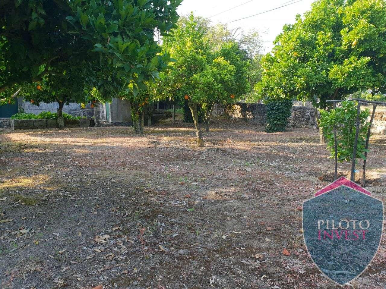 Quintas e herdades para comprar, Povolide, Viseu - Foto 27
