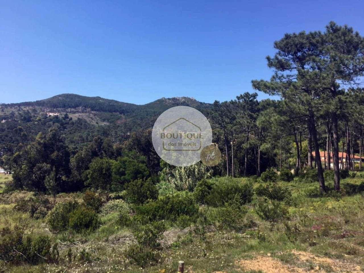 Terreno para comprar, Alcabideche, Cascais, Lisboa - Foto 3