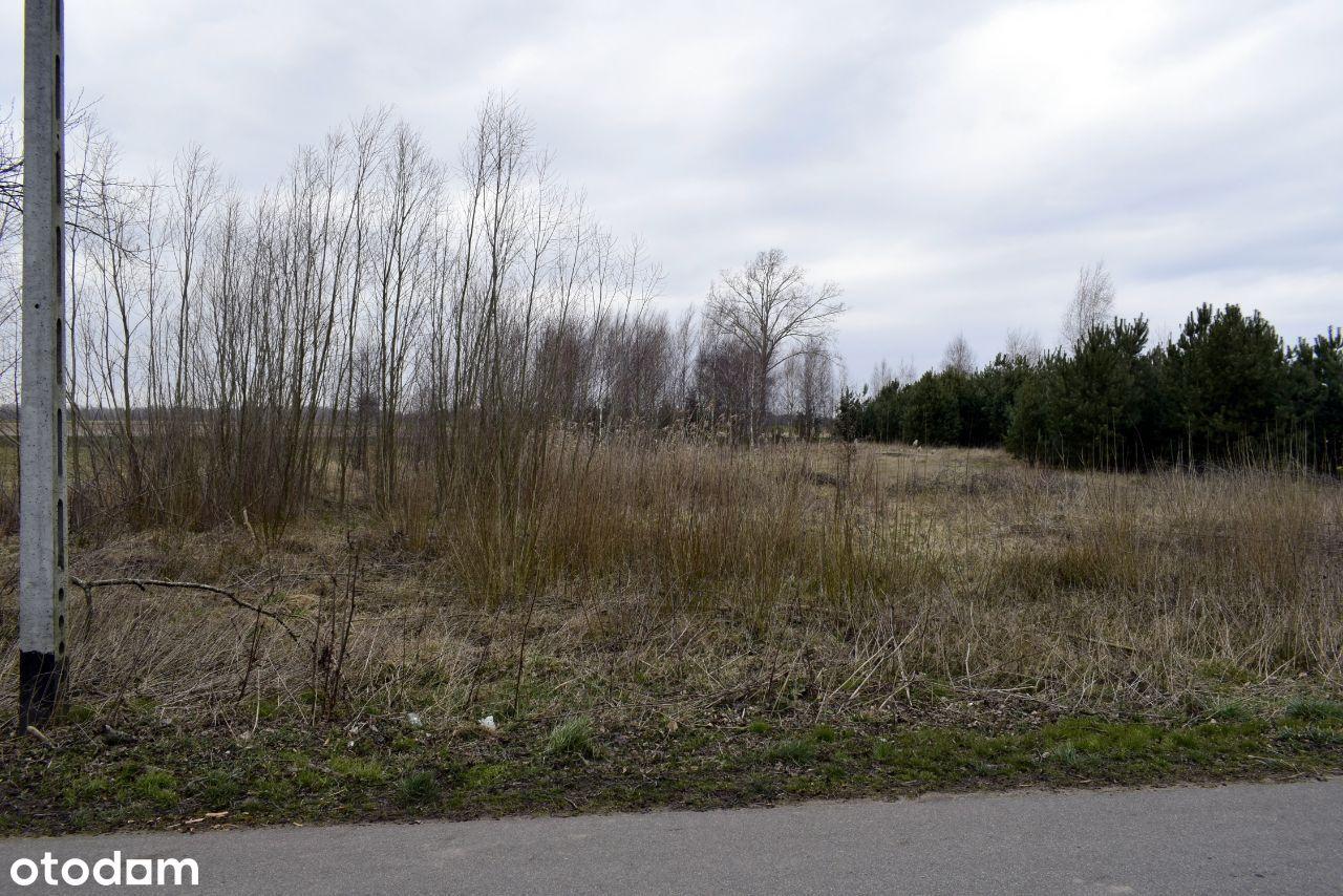 Działka rolno-budowlana 4954m2, Wdziękoń Pierwszy
