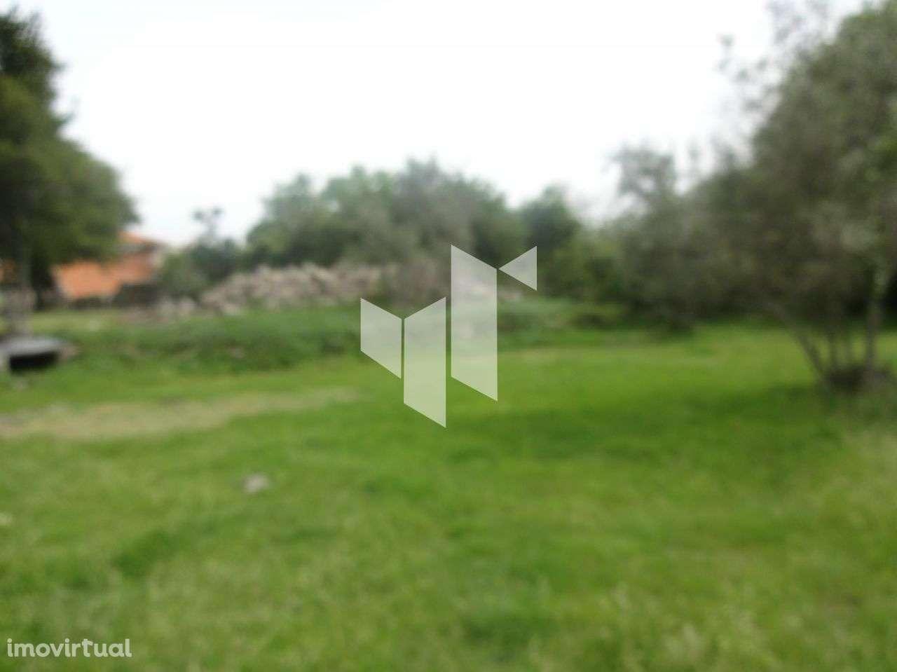 Quintas e herdades para comprar, Romãs, Decermilo e Vila Longa, Sátão, Viseu - Foto 4