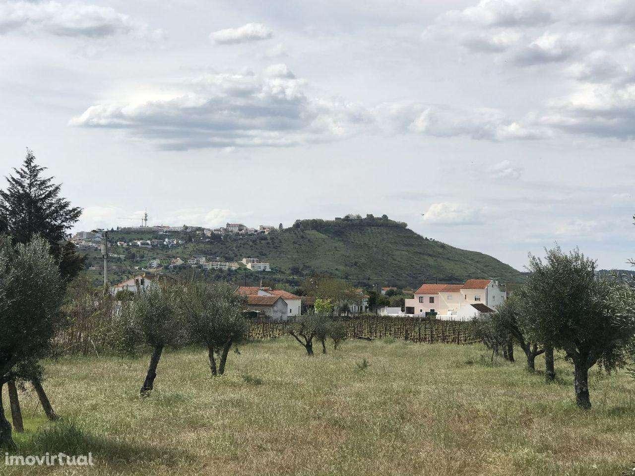 Quintas e herdades para comprar, Pego, Santarém - Foto 2