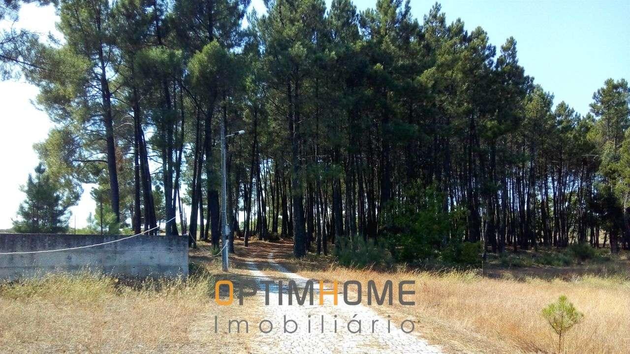 Quintas e herdades para comprar, Caria, Belmonte, Castelo Branco - Foto 20