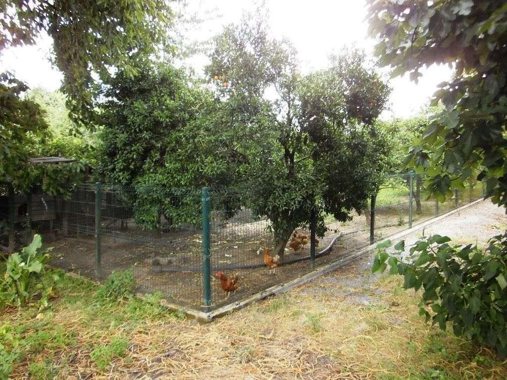 Quintas e herdades para comprar, Real, Dume e Semelhe, Braga - Foto 39