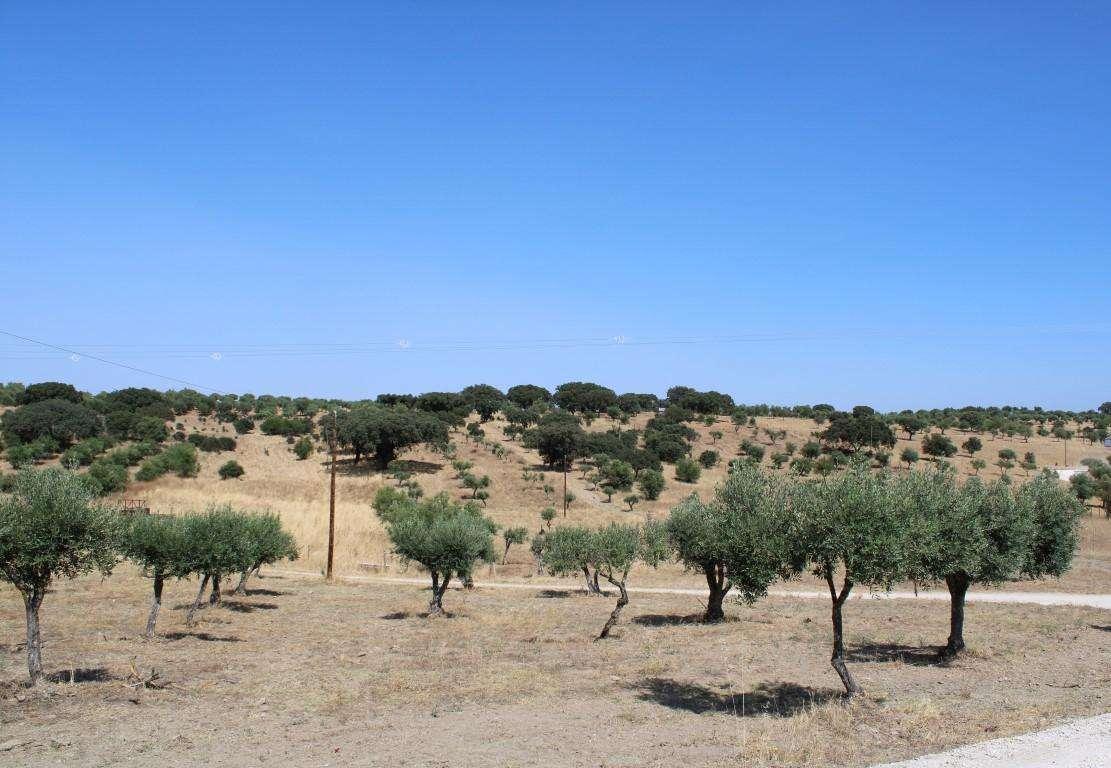 Quintas e herdades para comprar, Santo António (Capelins), Évora - Foto 44