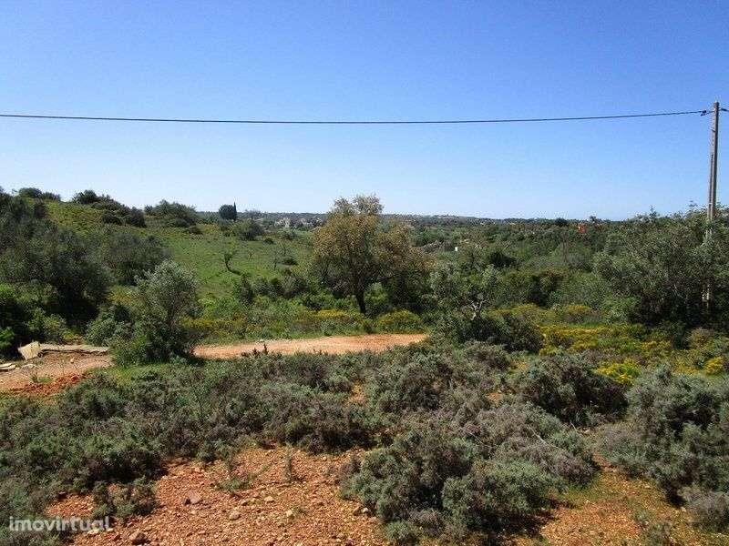 Quintas e herdades para comprar, Estômbar e Parchal, Faro - Foto 14
