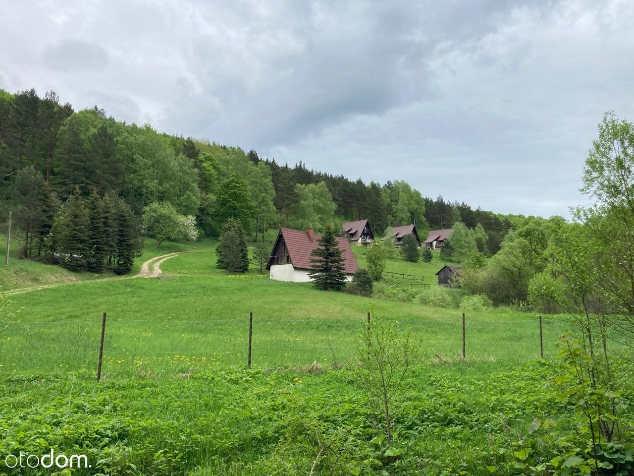 Beskid Niski, 4 hektary, 3 domki (+4 w planie)