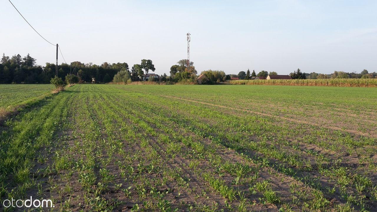 Grunty rolne obok węzła Mop Dłużniewo S7