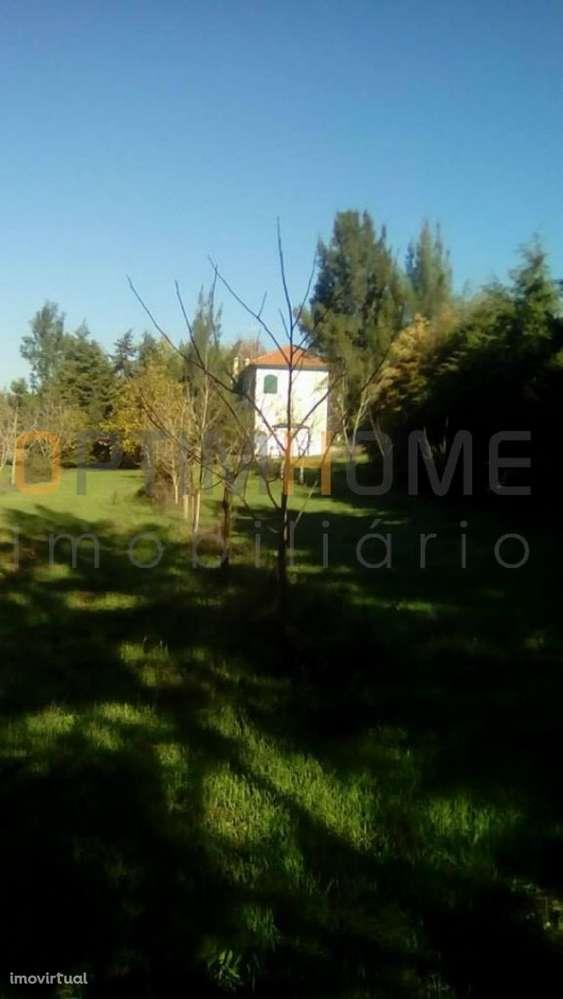 Moradia para comprar, Brogueira, Parceiros de Igreja e Alcorochel, Torres Novas, Santarém - Foto 27