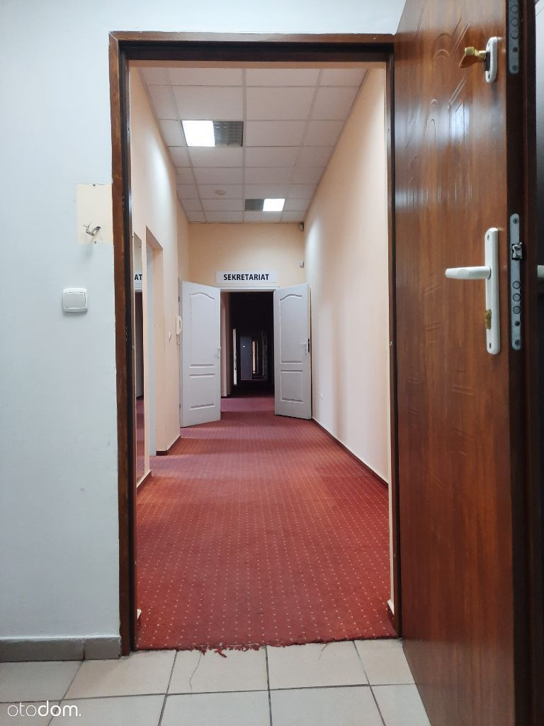 Piotrkowska 60 biuro w centrum lodzi bezposrednio