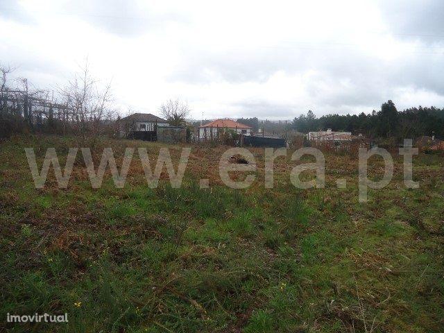 Terreno para construção com 4.000 m2 em Fafe