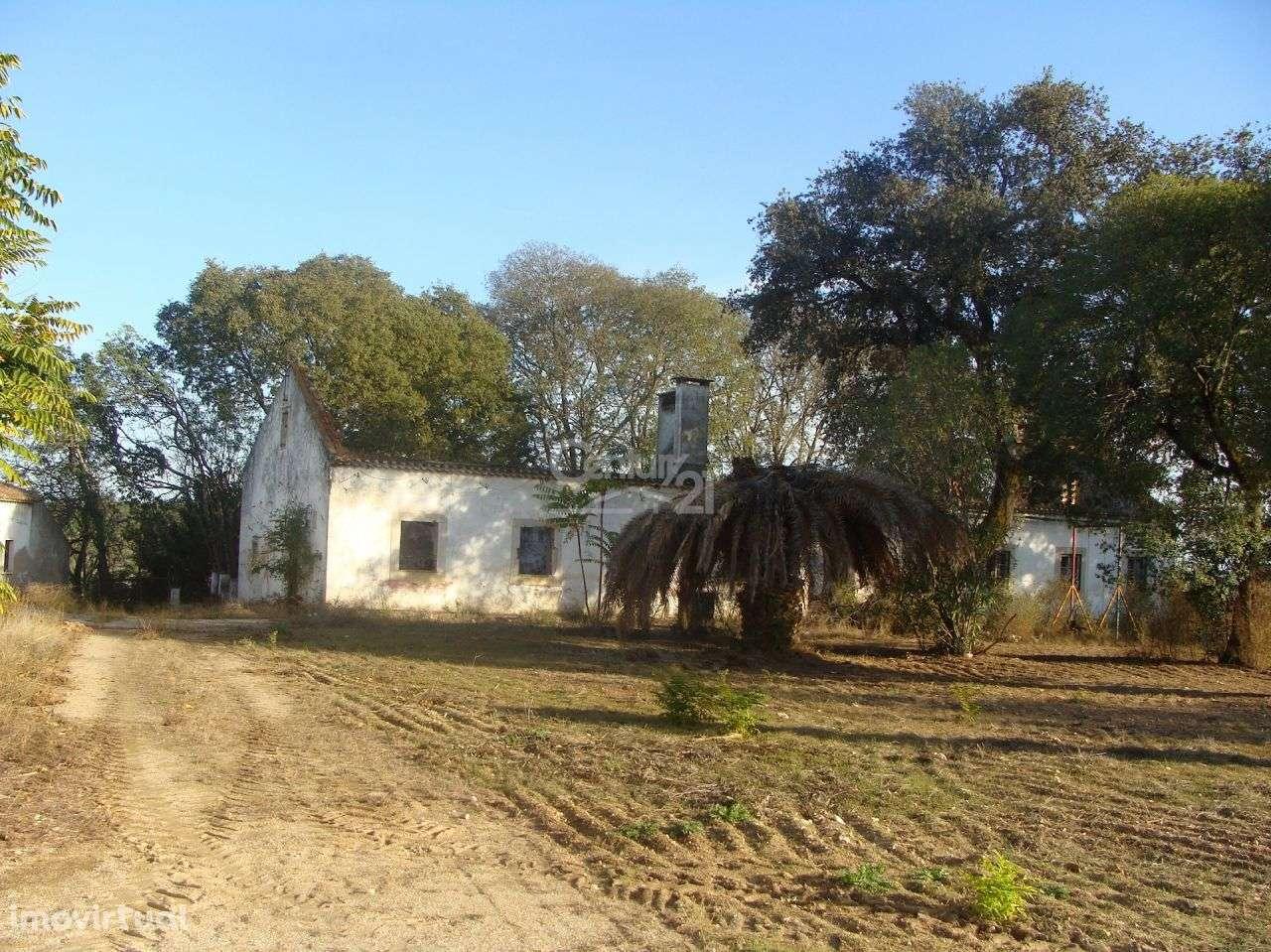 Quintas e herdades para comprar, Alcanhões, Santarém - Foto 3