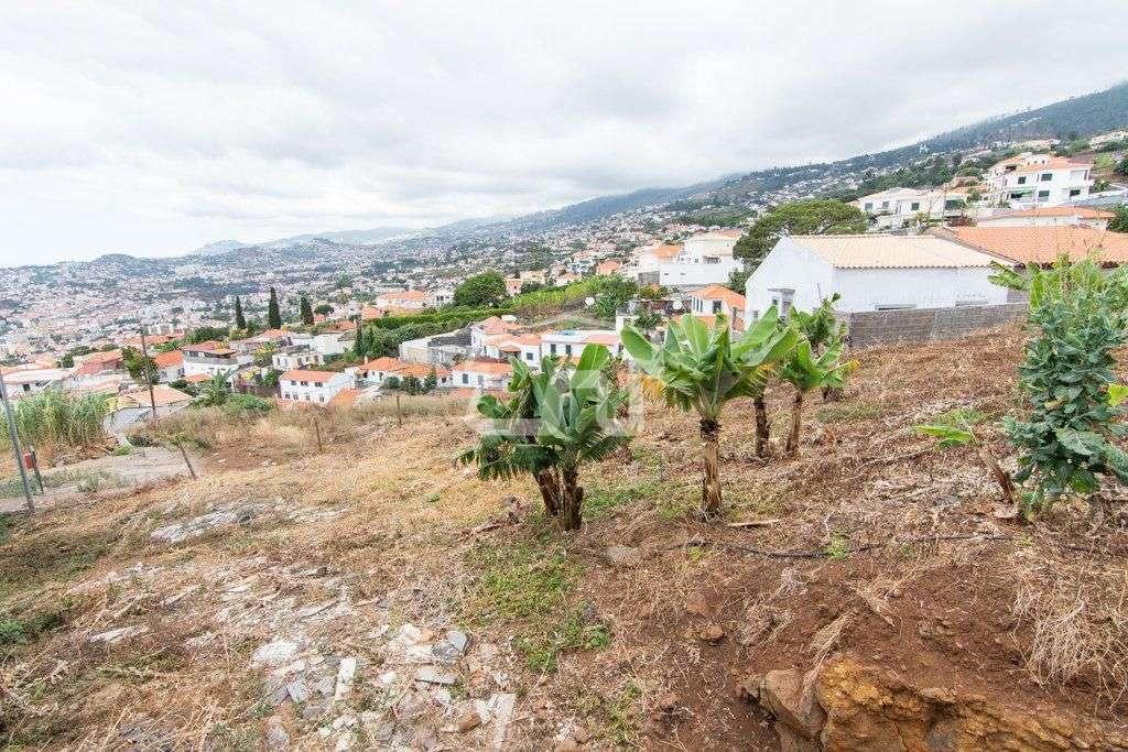Terreno para comprar, São Martinho, Ilha da Madeira - Foto 1