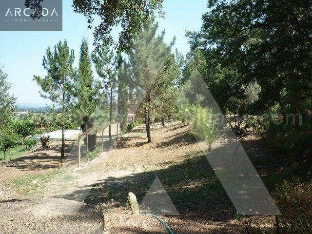 Quintas e herdades para comprar, Sangalhos, Anadia, Aveiro - Foto 13