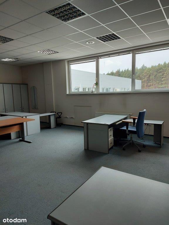 Lokal użytkowy, 175 m², Grudziądz