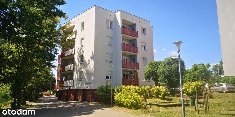 Mieszkanie Winogrady, Sołacz, Golęcin