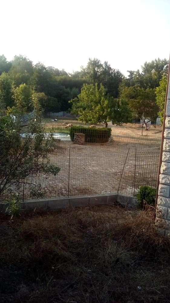 Moradia para arrendar, Santiago e São Simão de Litém e Albergaria dos Doze, Leiria - Foto 16