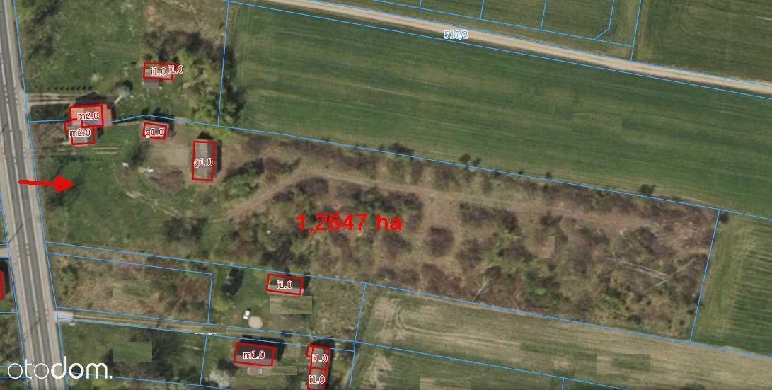Działka 1,2647 ha przy trasie E7 - Żurominek