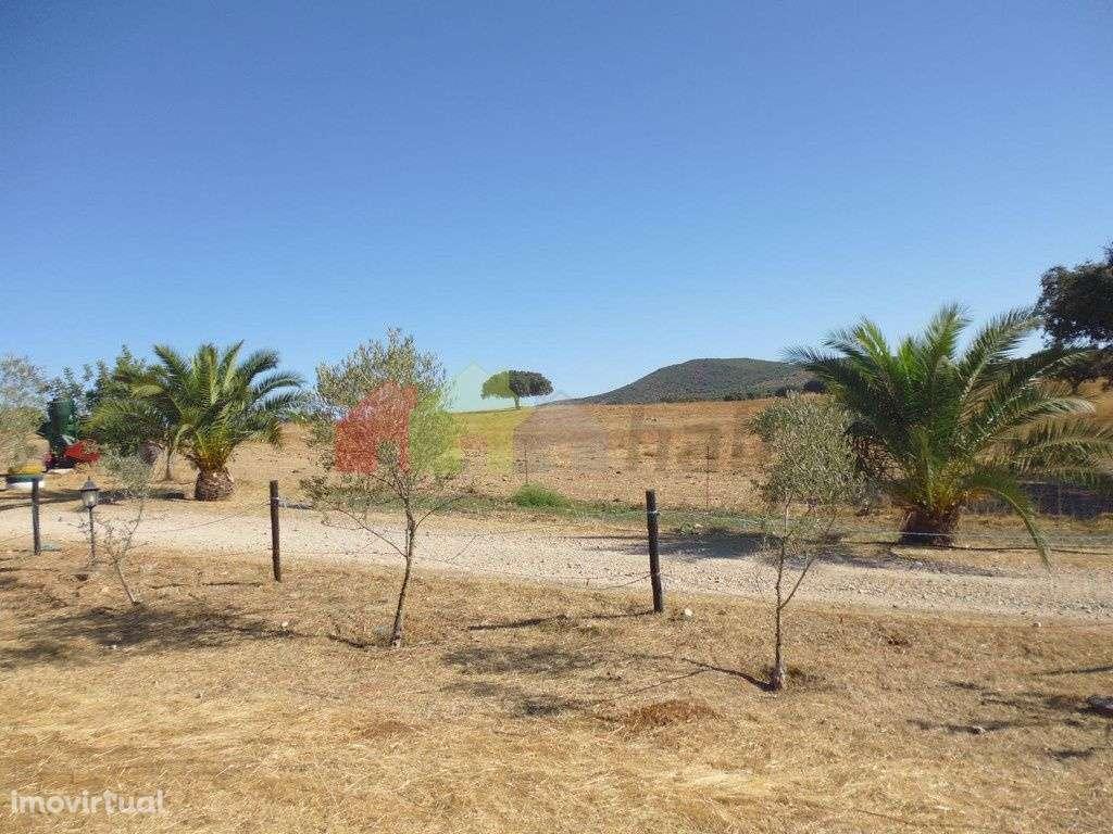 Quintas e herdades para comprar, Vila Verde de Ficalho, Beja - Foto 12