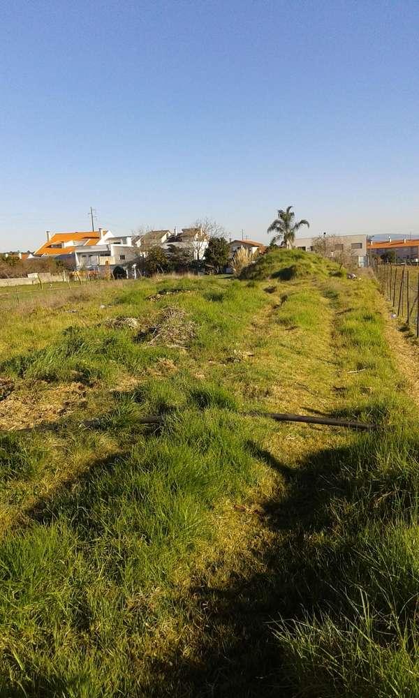 Terreno para comprar, Aradas, Aveiro - Foto 2