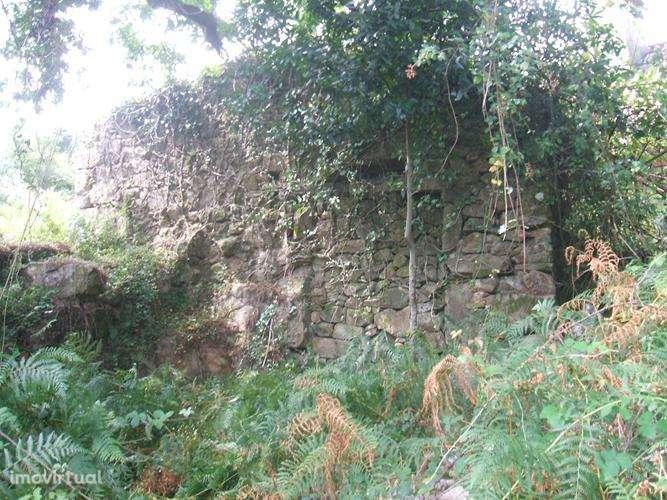 Quintas e herdades para comprar, Facha, Ponte de Lima, Viana do Castelo - Foto 14