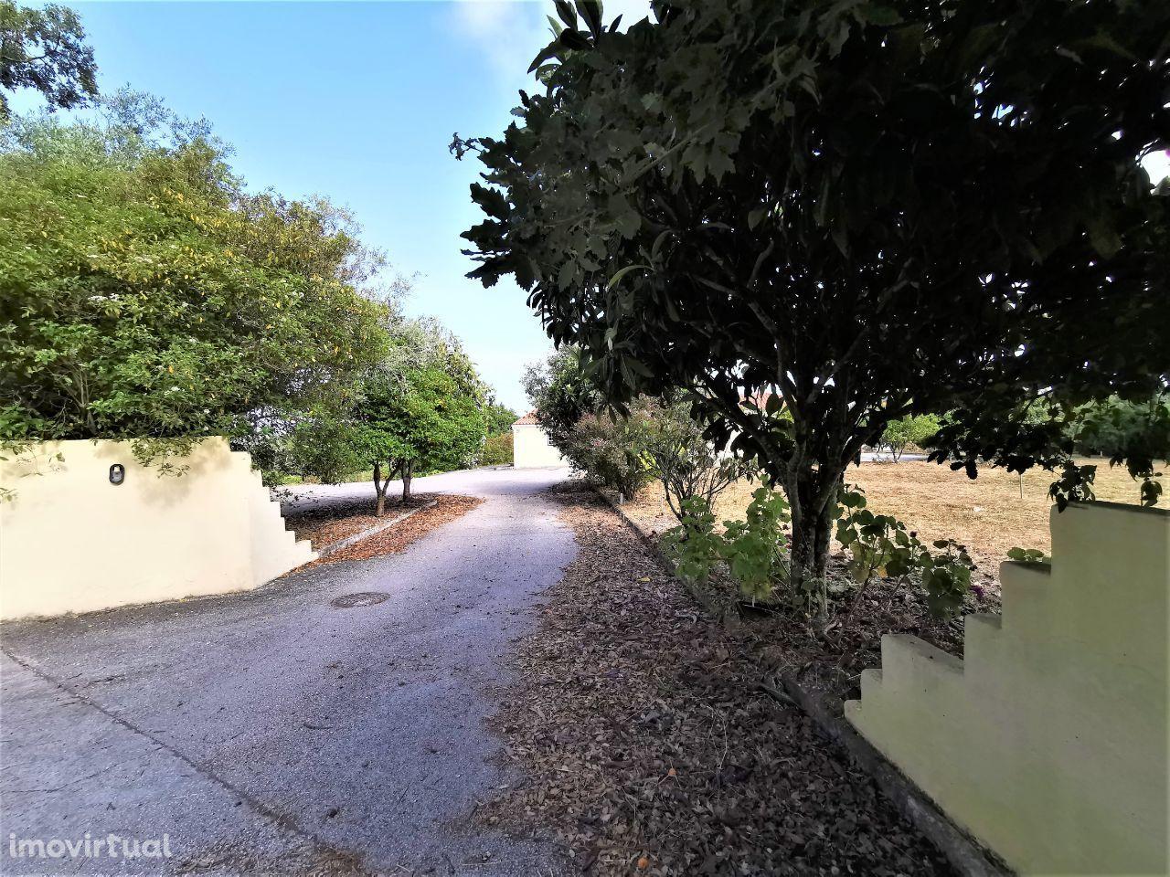 Quintas e herdades para comprar, Rua Alcobaça, Alcobaça e Vestiaria - Foto 49