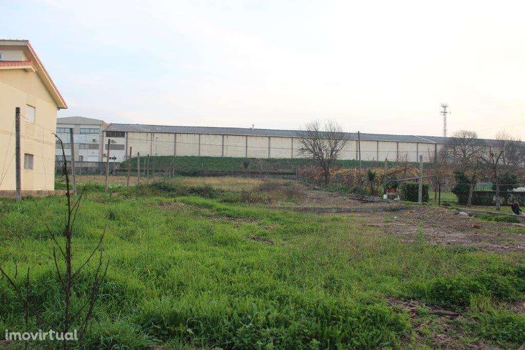 Terreno para comprar, Padim da Graça, Braga - Foto 4