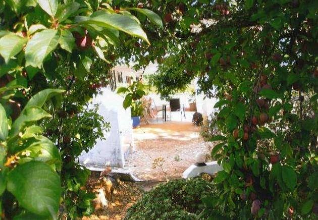 Moradia para comprar, Mexilhoeira Grande, Faro - Foto 2