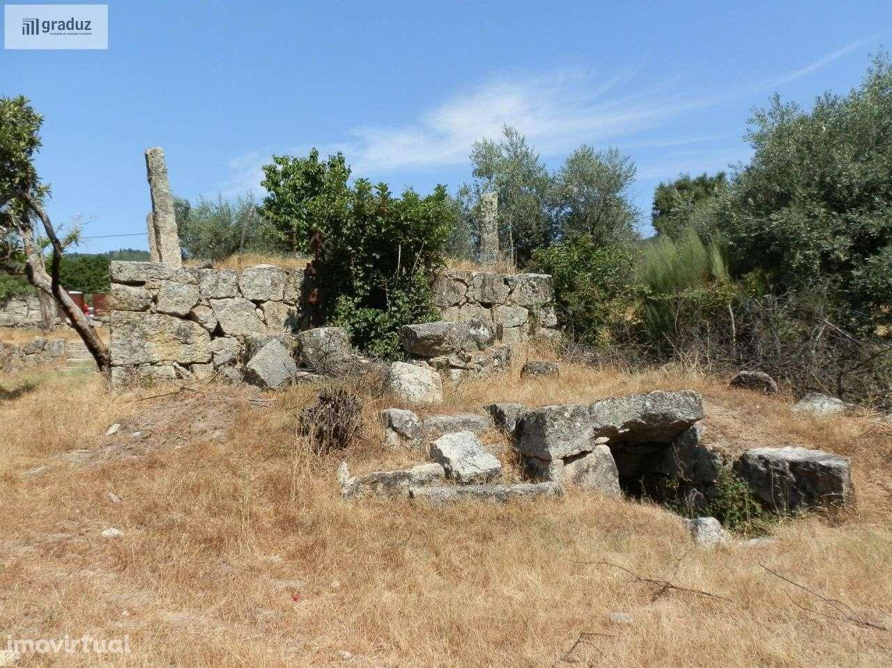 Quintas e herdades para comprar, Louriçal do Campo, Castelo Branco - Foto 26