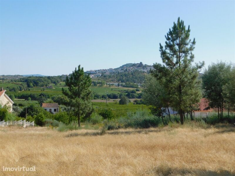 Lote de terreno Agrícola Colmeal da Torre Belmonte