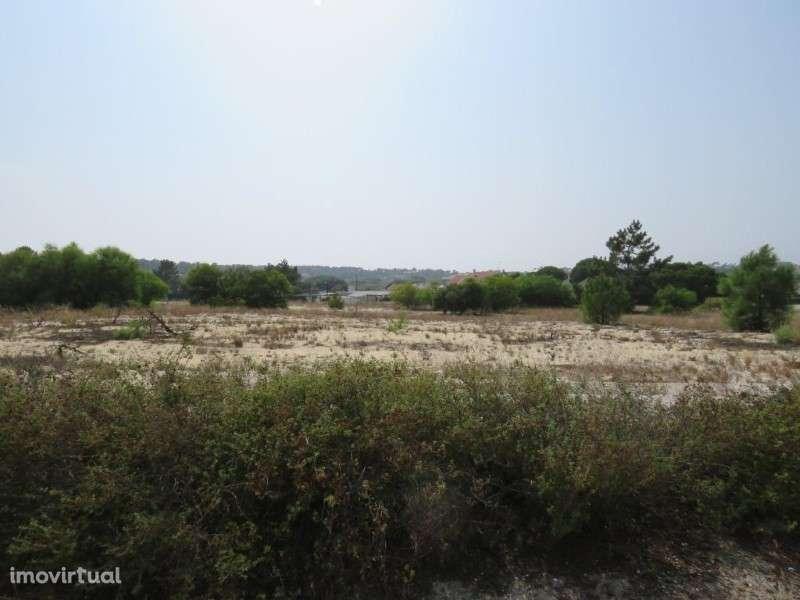 Terreno para comprar, Carvalhal, Grândola, Setúbal - Foto 7