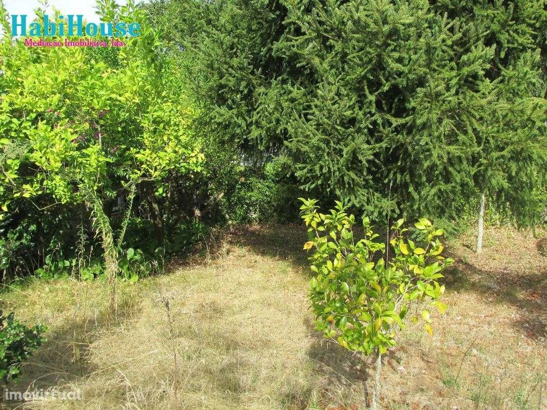 Quintas e herdades para comprar, Silgueiros, Viseu - Foto 5