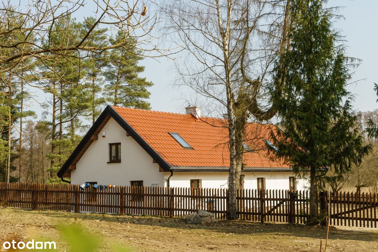 Dom w Lesie, siedlisko