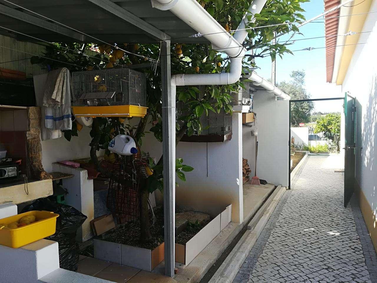 Moradia para comprar, Brogueira, Parceiros de Igreja e Alcorochel, Santarém - Foto 36