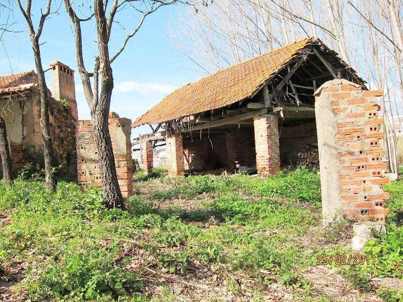 Terreno para comprar, Coz, Alpedriz e Montes, Leiria - Foto 1