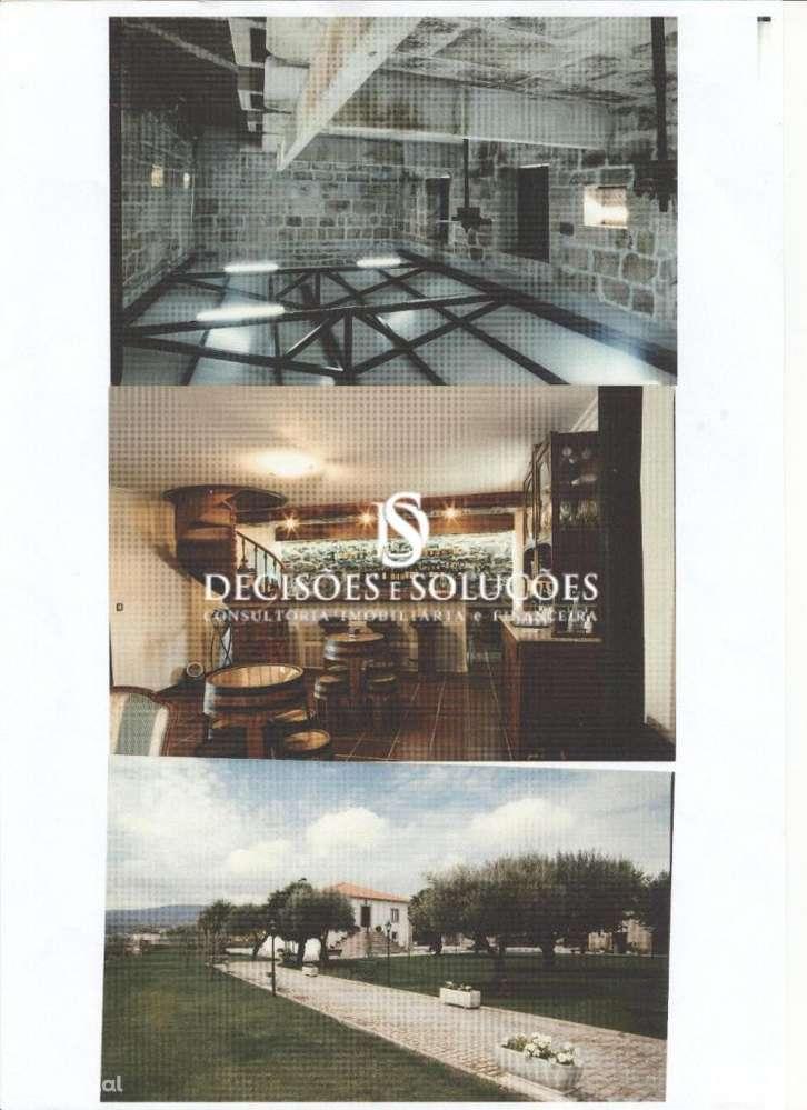 Quintas e herdades para comprar, Provesende, Gouvães do Douro e São Cristóvão do Douro, Vila Real - Foto 4
