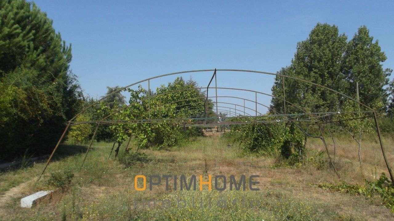 Quintas e herdades para comprar, Caria, Belmonte, Castelo Branco - Foto 6