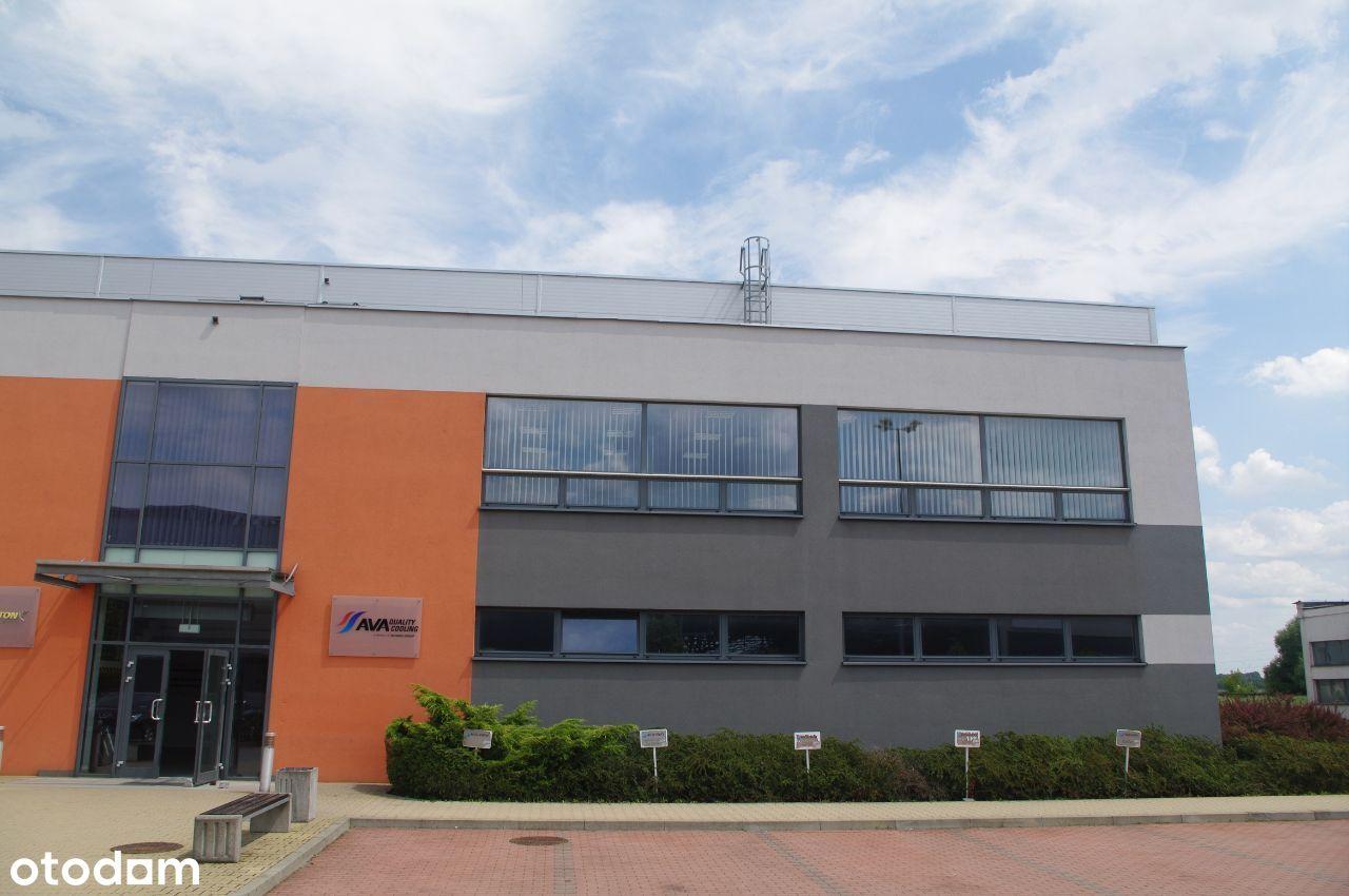 1646 m² hali i pom. socjalnych - wysoki standard