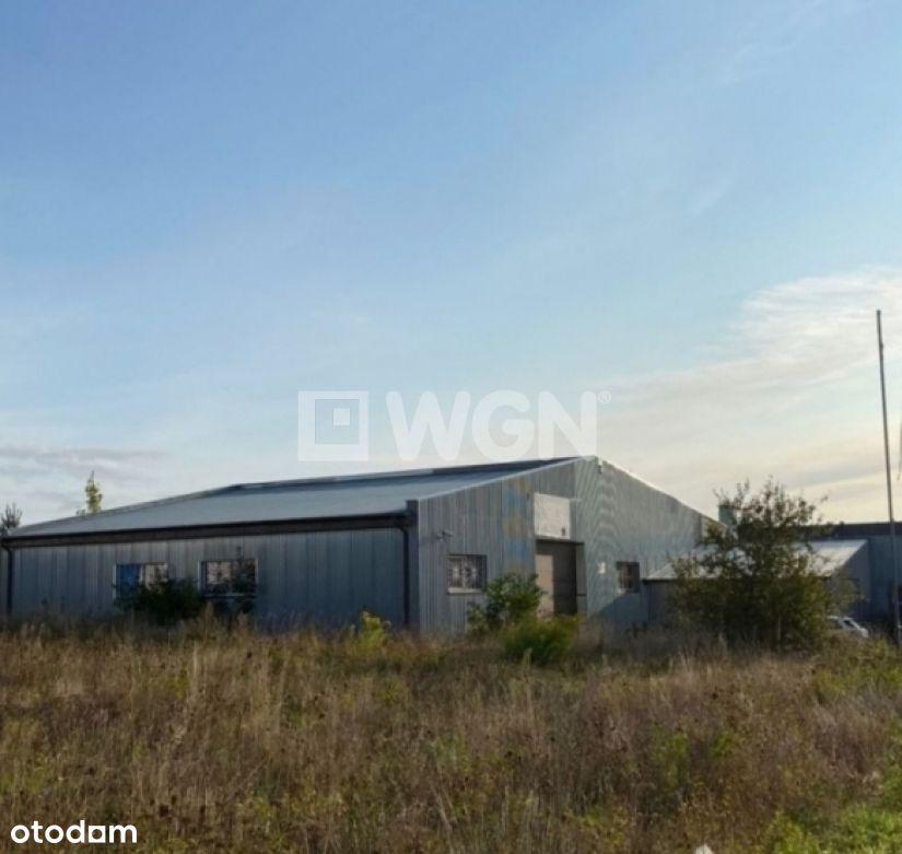 Działka, 3 500 m², Banino