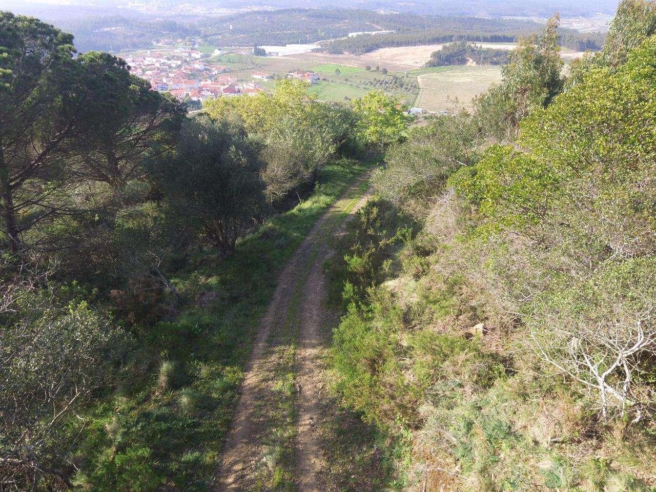 Terreno para comprar, Maxial e Monte Redondo, Lisboa - Foto 3