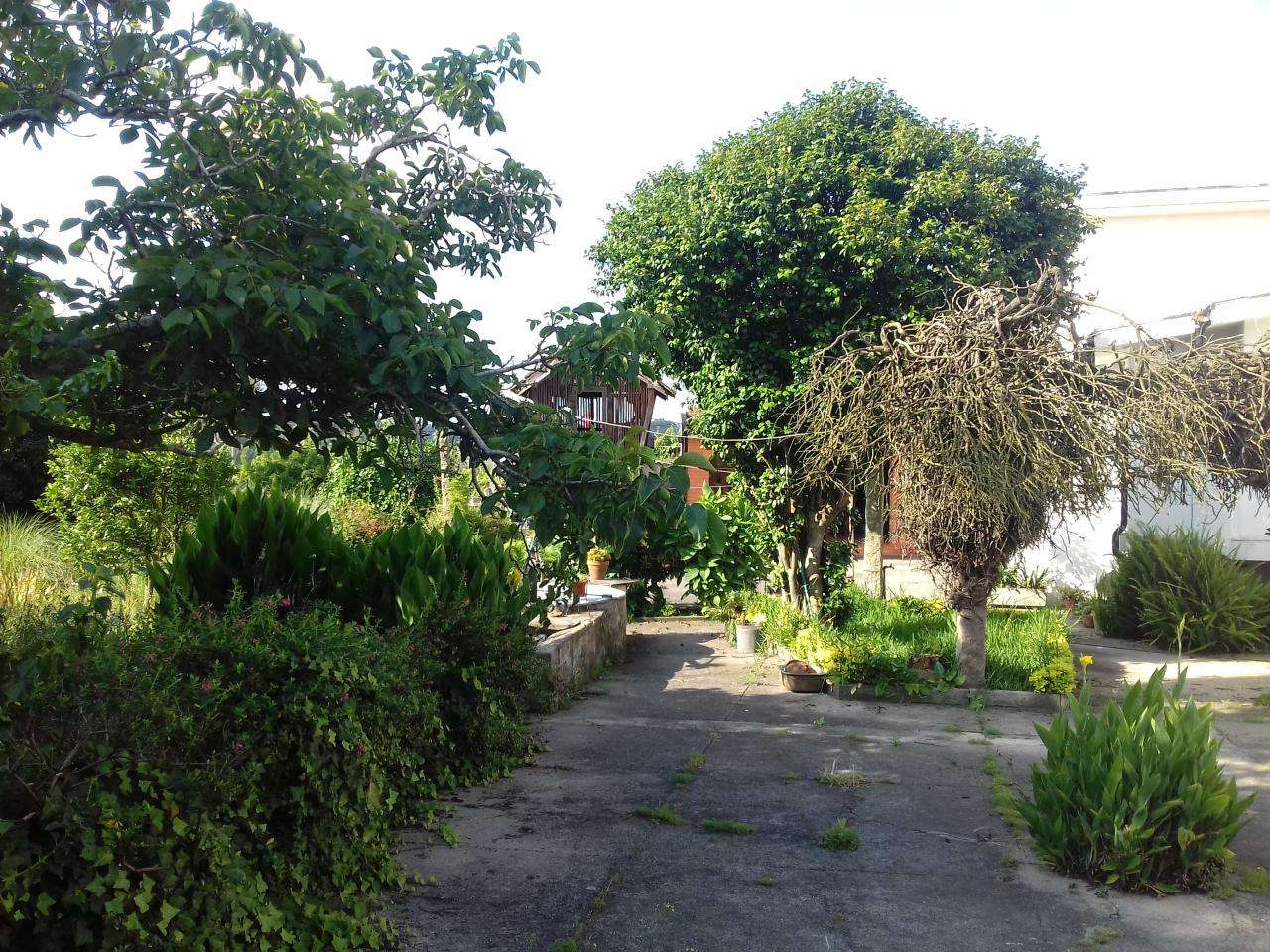 Quintas e herdades para comprar, Canidelo, Porto - Foto 14