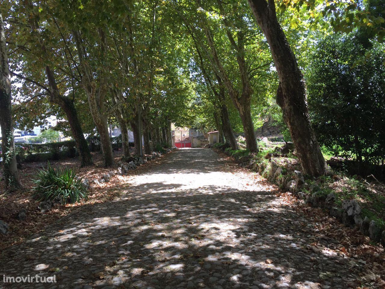 FONTE DOS CASTANHEIROS: Quinta no centro de Caneças