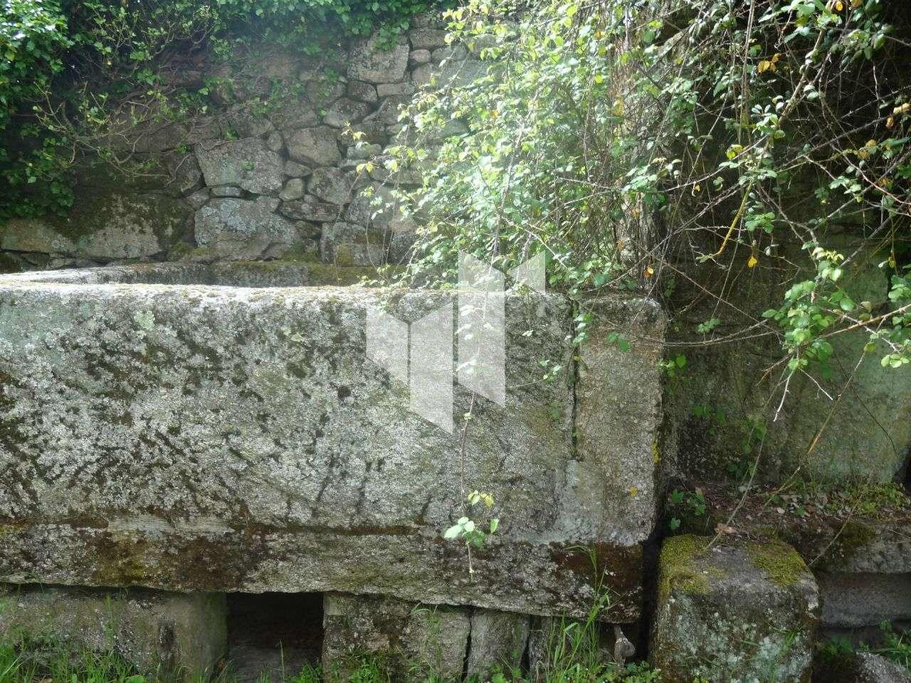 Quintas e herdades para comprar, Romãs, Decermilo e Vila Longa, Sátão, Viseu - Foto 33