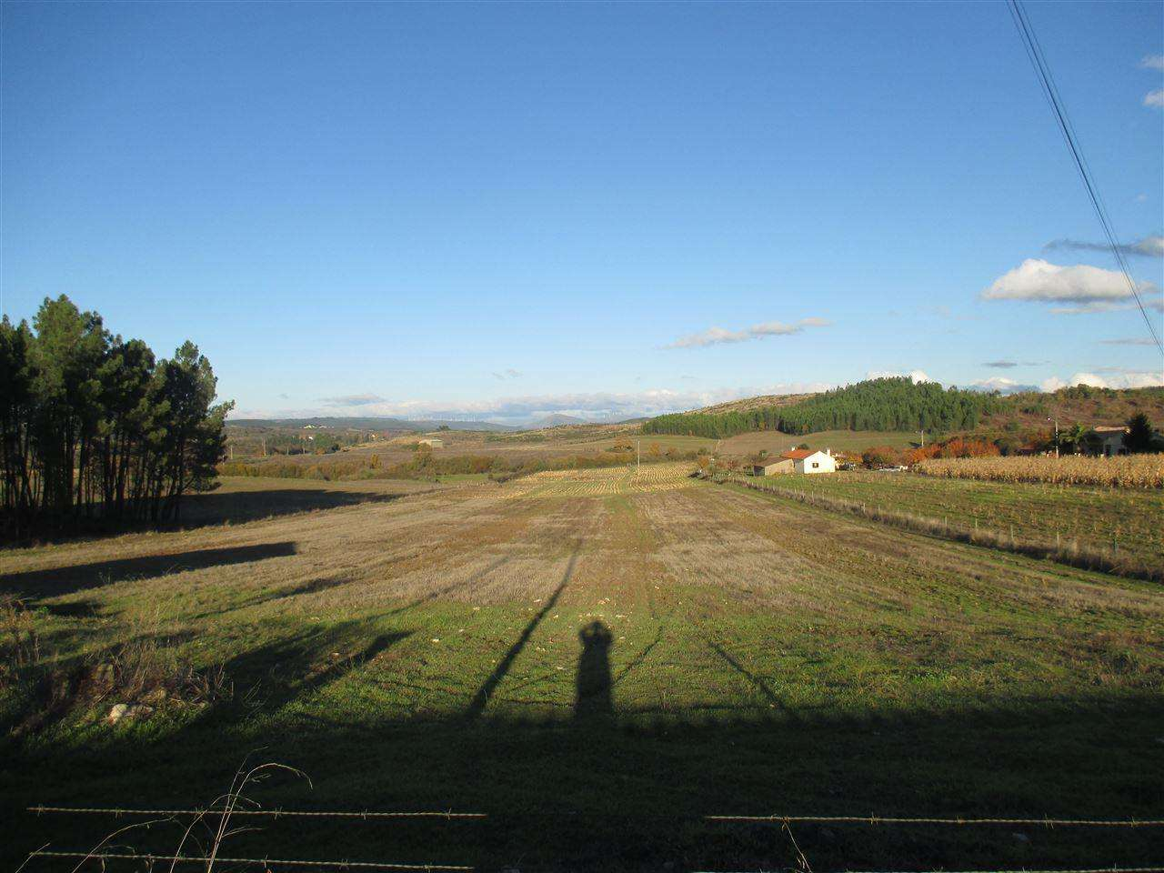 Quintas e herdades para comprar, Enxames, Castelo Branco - Foto 3