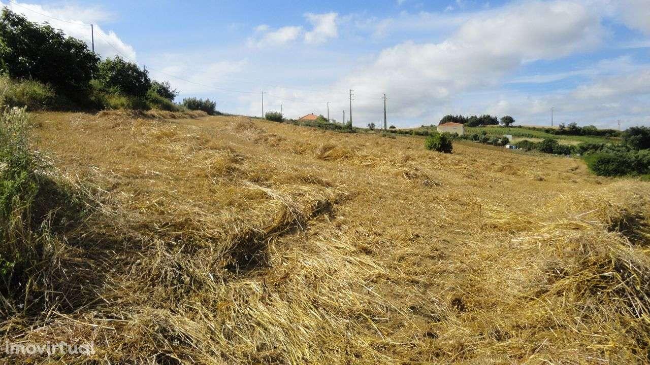 Quintas e herdades para comprar, Arruda dos Vinhos - Foto 11