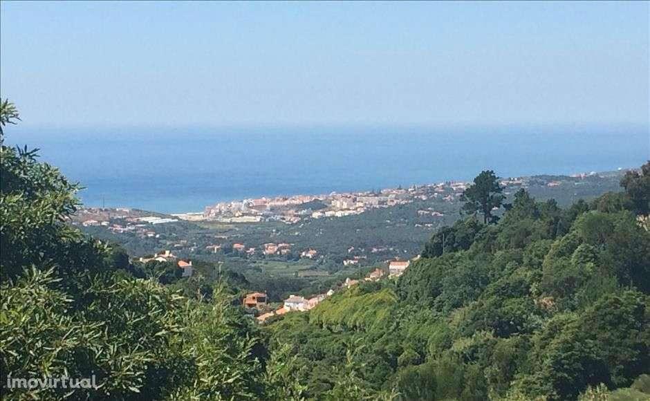 Quintas e herdades para comprar, Colares, Sintra, Lisboa - Foto 17